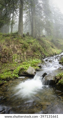 A small forest streem in the carpathian mountains. Vertical wide angle. copy space - stock photo