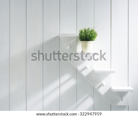 A small green plant on the white shelf. Interior image.