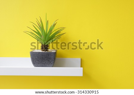 A small green plant on the white shelf, yellow wall
