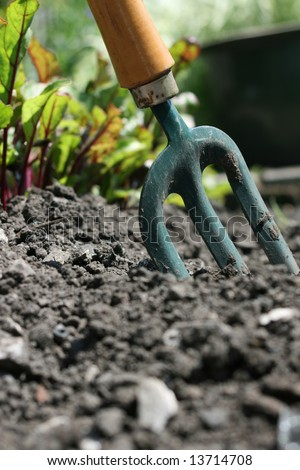 Garden fork stock photos images pictures shutterstock for Ladies small garden fork