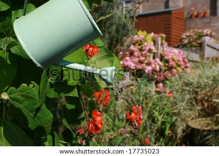 A small hand held watering can being held aloft against an urban garden scene.Water emerging from spout of watering can. Landscape format. - stock photo