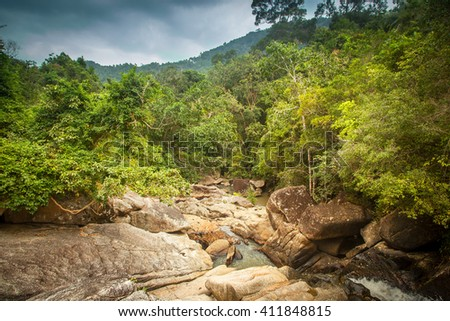 A small mountain river in a tropical jungle. Beautiful bright landscape - stock photo