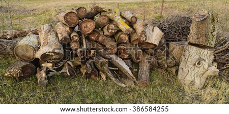 A small pile of firewood stacked. Old Hemp, affected by fungi and lichen. Firewood for baths and fires. - stock photo