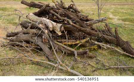 A small pile, of firewood stacked. Old Hemp, affected by fungi and lichen. Firewood for baths and fires.