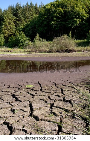 A small pond drying out in the summer - stock photo