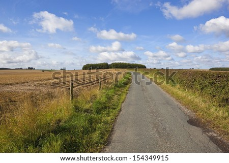 a small rural road amongst agricultural scenery in the yorkshire wolds england under a blue cloudy sky in late summer