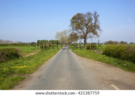 a small scenic english country lane with trees and hedgerows coming into leaf in springtime under a clear blue sky - stock photo