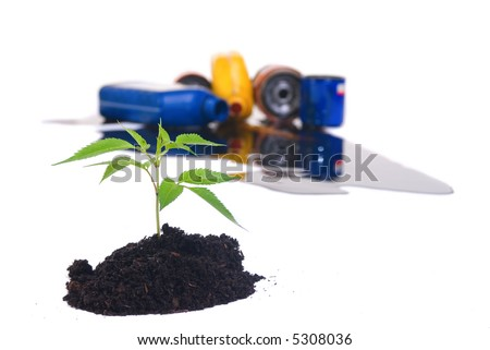 A small seedling sprouts from a pile of clean soil..... but how long will it be clean? - stock photo