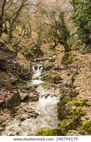A small stream in a forest at winter season - stock photo