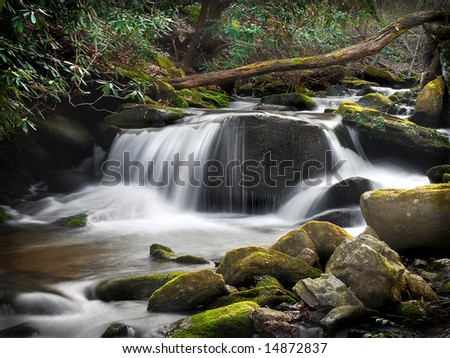 A small waterfall in the Blue Ridge Mountains with the milky water effect.  Moss covered rocks in the foreground, and mountain laurel in the background. - stock photo
