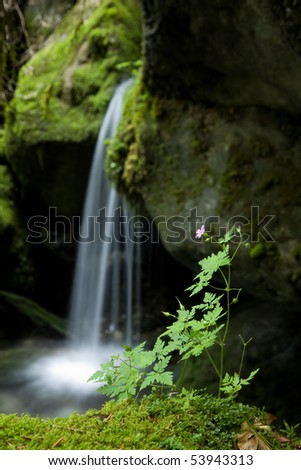 A small waterfall over mossy stones. - stock photo