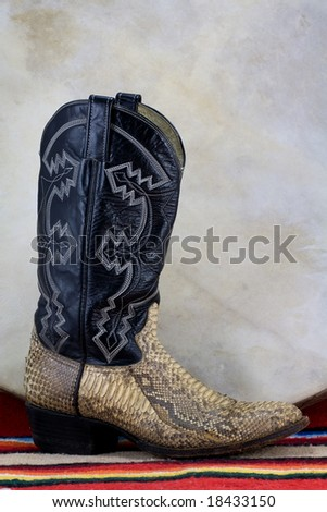 A snake skin cowboy boot with skin drum. - stock photo