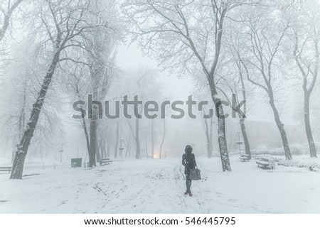 a snow blizzard foggy morning silhouettes of passers citizens walking under the snow-covered trees in the background of the cold urban park, girl stands in the middle alley