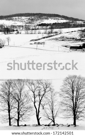 """A snow covered landscape in the Pocono Mountains. The bare trees at the bottom give a sort of """"inverted"""" perspective. - stock photo"""