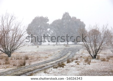 A snow scene near Laggan, New South Wales, Australia