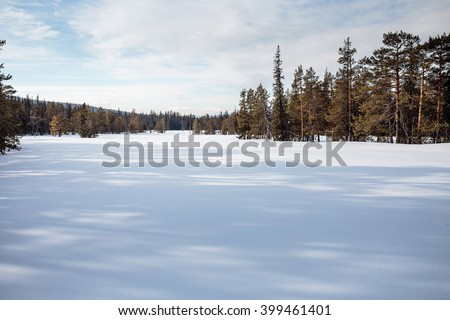 A snowy field with a forest rural landscape  - stock photo
