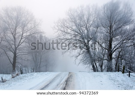 A snowy road up between the trees. It is very early in the morning and it freezes very much in the Netherlands. The morning mist still hangs over the landscape. The view is limited and less colorful.