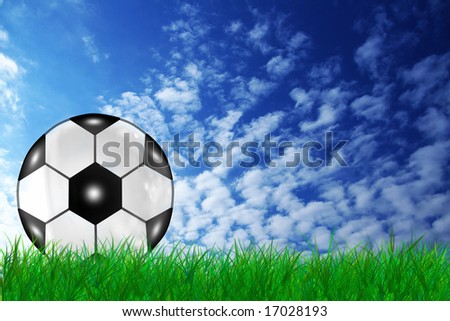 a soccer ball on the grass
