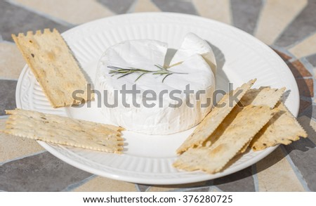 a soft cheese on a plate with crackers on a bistro table  and a cut wedge - stock photo