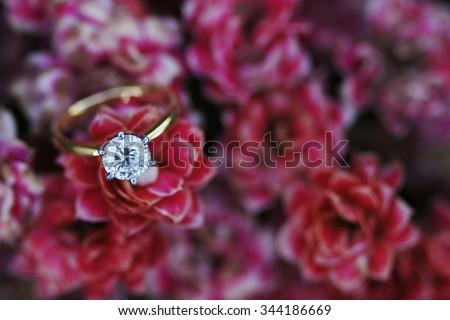 A solitaire ideal cut diamond ring ina field of red flowers.                                 - stock photo