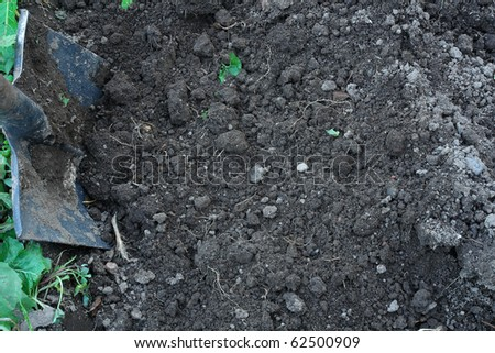A spade in the act of digging into the soil - stock photo