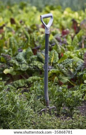A spade in the garden - stock photo