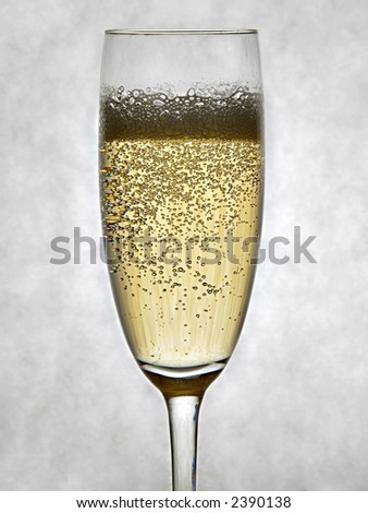 A sparkling glass of Champagne on a gray background - stock photo