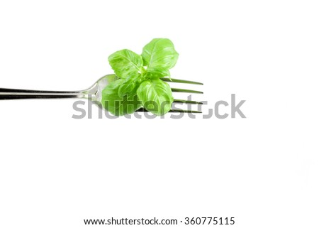 a sprig of fresh basil on a fork on a white background - stock photo