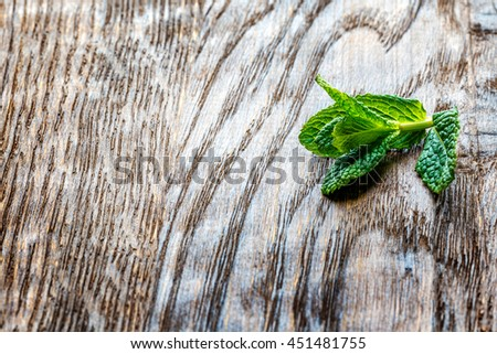 a sprig of green mint plant on a wooden background table - stock photo