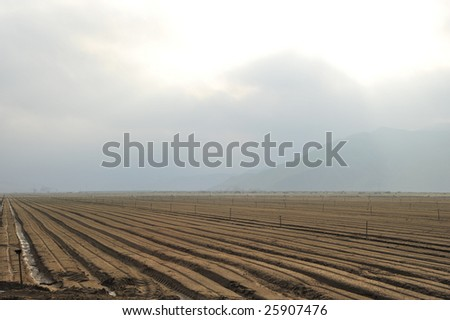 A spring storm brings rain to a newly planted California farm field - stock photo