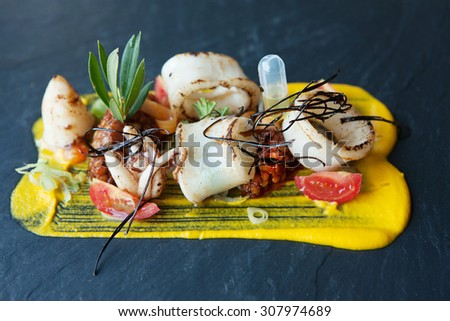 a squids gourmet plate close up - stock photo
