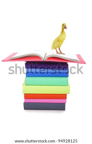 A stack of books with a cute duck - stock photo