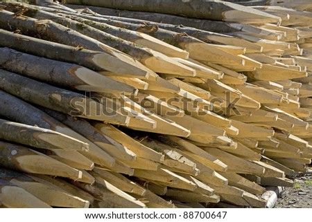 A stack of pointed sharpen wooden posts or fence stakes. - stock photo