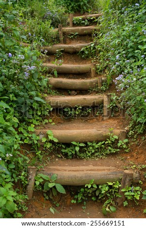 A staircase in a thicket and sprinkled with flowers in purple - stock photo