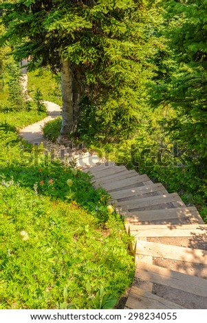 A stairs at trail in Blackwall Peak trail at Manning Park, British Columbia, Canada. - stock photo