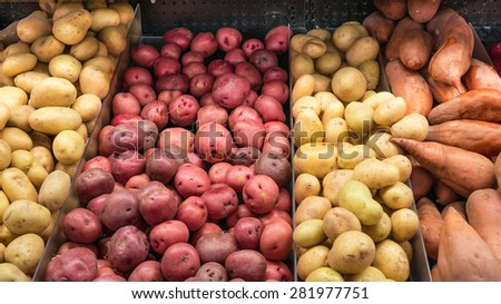A stand with variety potatoes tubers in a supermarket at Colfax, Whitman County, Washington, USA. Concept of pattern texture and background. - stock photo