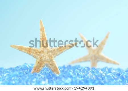 A star fish in blue rocks with its reflection behind it. - stock photo