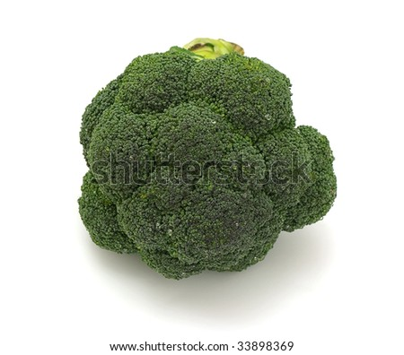a stem of broccoli isolatedd on white background