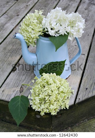 A still life of white and green hydrangeas arranged around an antique blue pitcher on a wooden deck