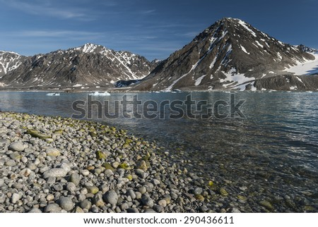 A stone beach in Magdalena bay, Spitzbergen on a sunny day - stock photo