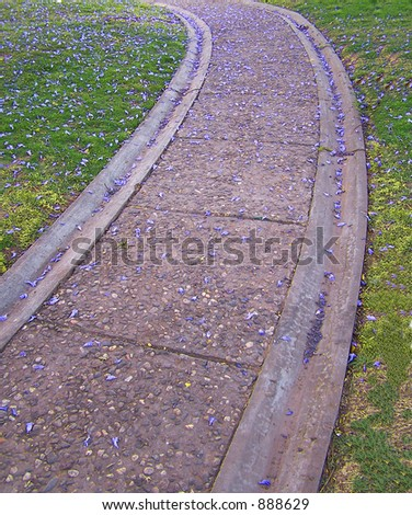 A stone path through grass sprinkled with purple flowers