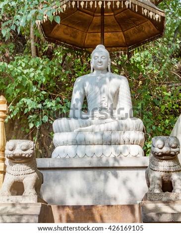A stone statue of Buddha under a banyan tree in the Kelaniya Temple, Sri Lanka. - stock photo