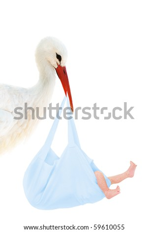A stork holding a blue bag with a baby in his beak - stock photo