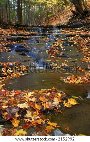 A stream flows down several small waterfalls and through fallen leaves in the fall - stock photo