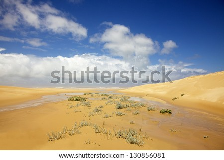 A stream running down from the dunes into the Indian Ocean, in an area known as the Sunshine Coast, in South Africa. - stock photo