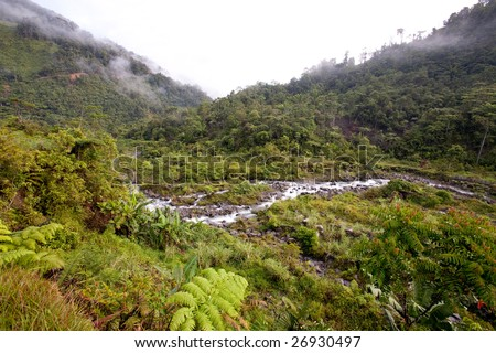 A stream winds through tropical mountains - stock photo