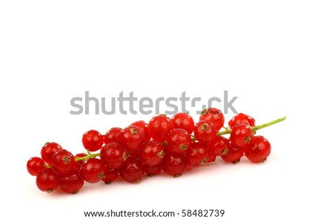 a string of red currant on a white background