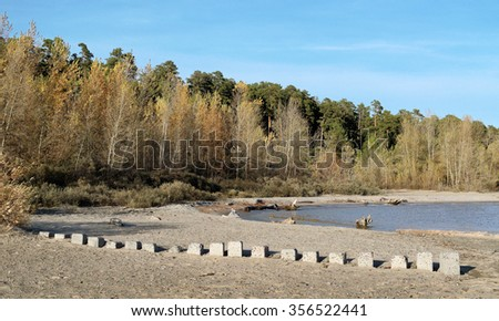A strip of woods on the shore of the sea autumn Sunny day