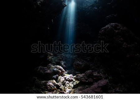 A sunbeam descends into an underwater grotto in the Solomon Islands. This remote, tropical region is part of the Coral Triangle and is known for its incredible marine biodiversity.