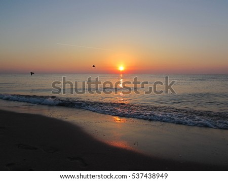 A sunrise on a beach